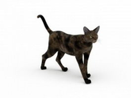 Celtic shorthair cat 3d model