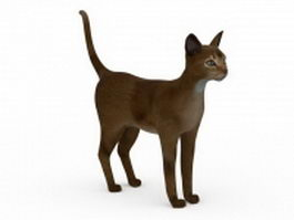 Ruddy Abyssinian Cat 3d model