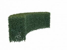 Curved boxwood hedge 3d model