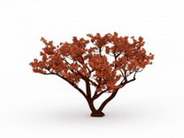 Red tree 3d preview
