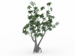 Pink and green blossom tree 3d model