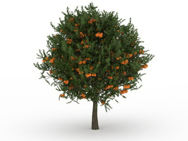 Fruit Tree 3d Model 3ds Max Files Free Download Modeling