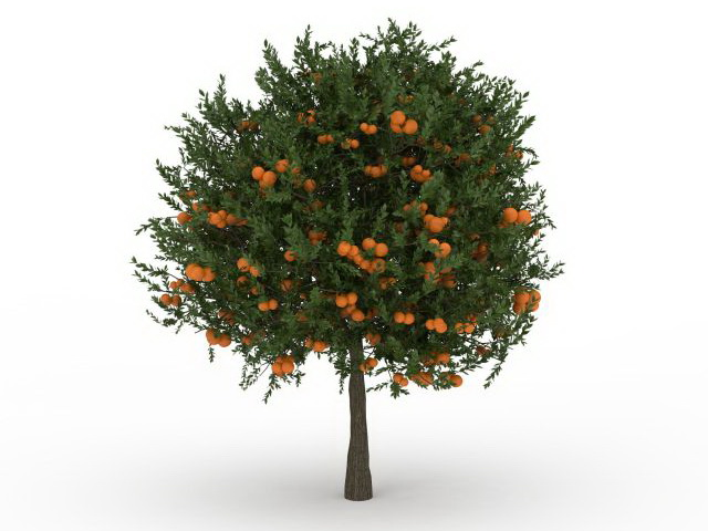dwarf fruit tree 3d model for 3ds max tree full of fruit available 3d file format max 3d studio max vray renderer texture format jpg
