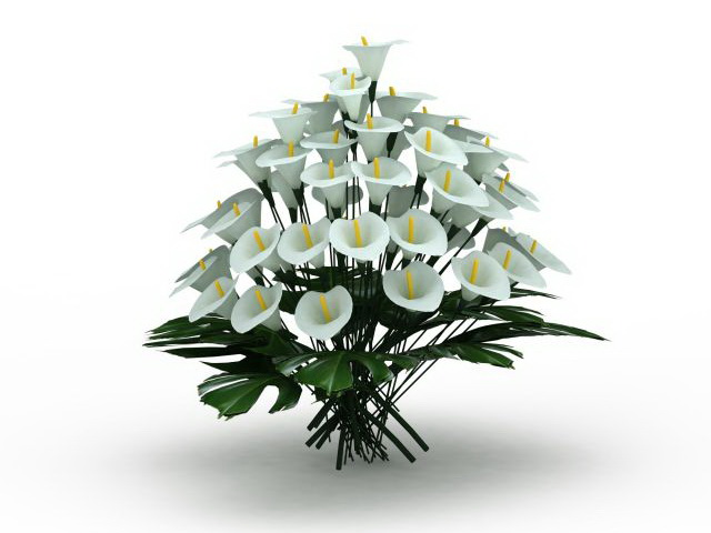 White Lilium Flowers 3d Model 3ds Max Files Free Download