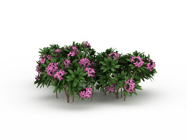 Pink Flowers Plants 3d Model 3ds Max Files Free Download