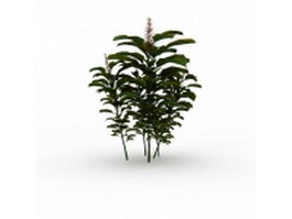 Tree branch with leaves 3d model