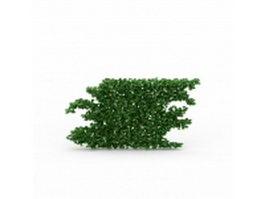 Green wall plants 3d model