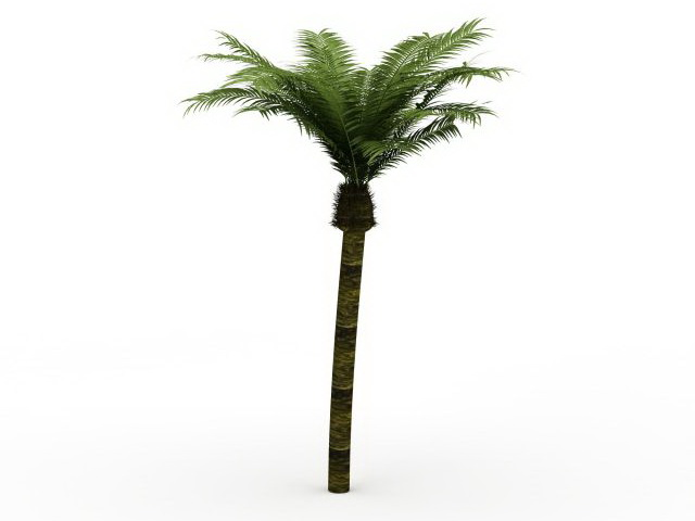 Date Palm Tree 3d Model 3ds Max Files Free Download