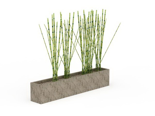 Garden Potted Bamboo 3d Model 3ds Max Files Free Download