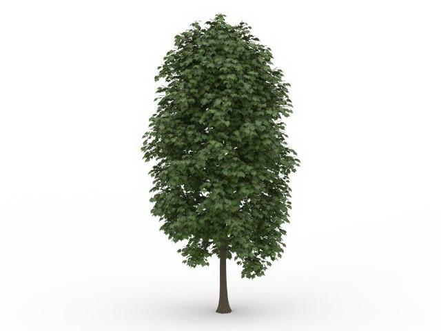 Tree 3ds max License File
