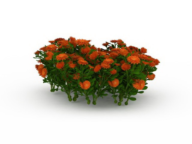 Orange And Yellow Flower Plant 3d Model 3ds Max Files Free