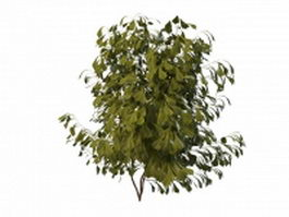 Small tree bush 3d model