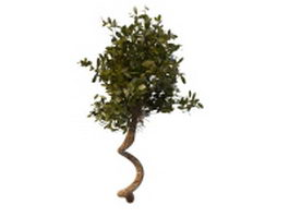 Large vine with leaves 3d model