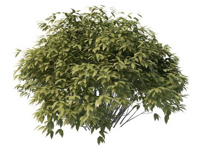 Small Bush Tree 3d Model 3ds Max Files Free Download