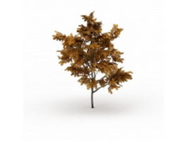 Golden ash tree 3d model
