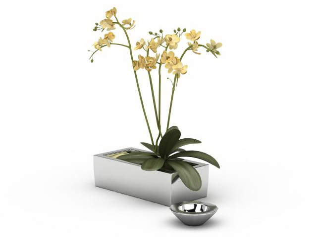 Small Rectangle Flower Pot 3d Model 3ds Max Files Free