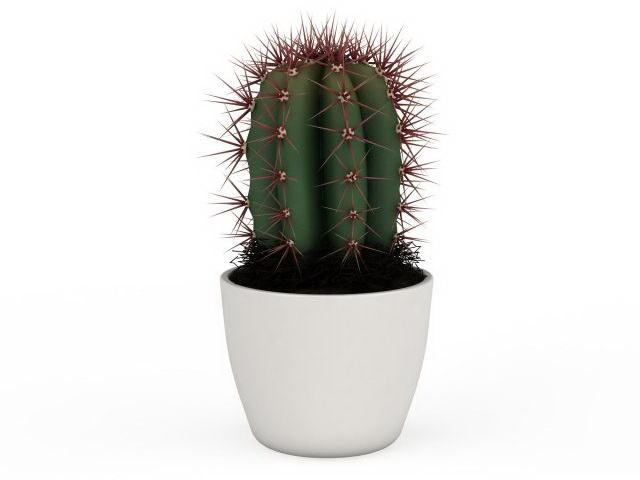 house plant potted cactus 3d model 3ds max files free