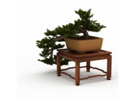 Indoor bonsai tree on table 3d model