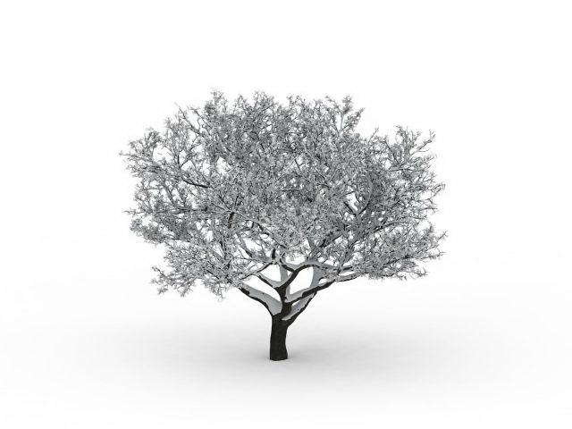 Winter Snow Tree 3d Model 3ds Max Files Free Download