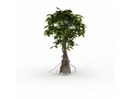 Vine climbing on tree 3d model