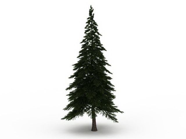 Alpine Pine Tree 3d Model 3ds Max Files Free Download Modeling
