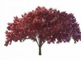 Red tree for landscaping 3d model