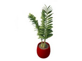 Potted plant with round leaves 3d model