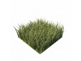 Piece of green grass 3d model