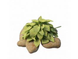 Rock and plant garden 3d model