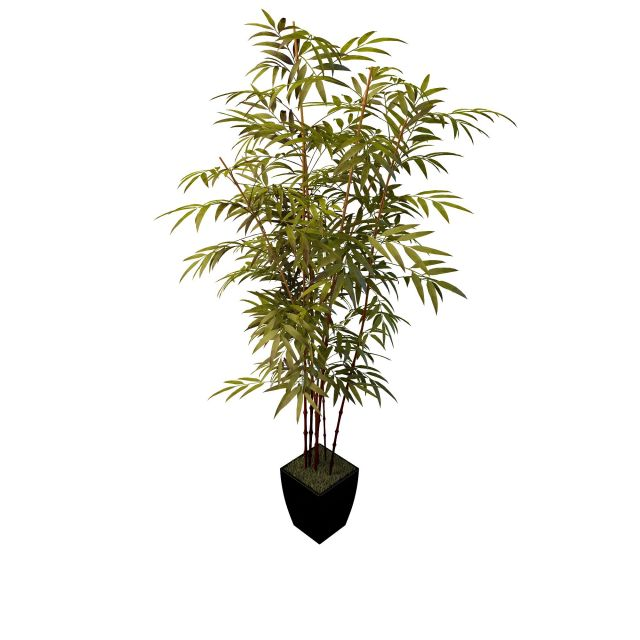 Bamboo Plant Pot 3d Model 3ds Max Files Free Download