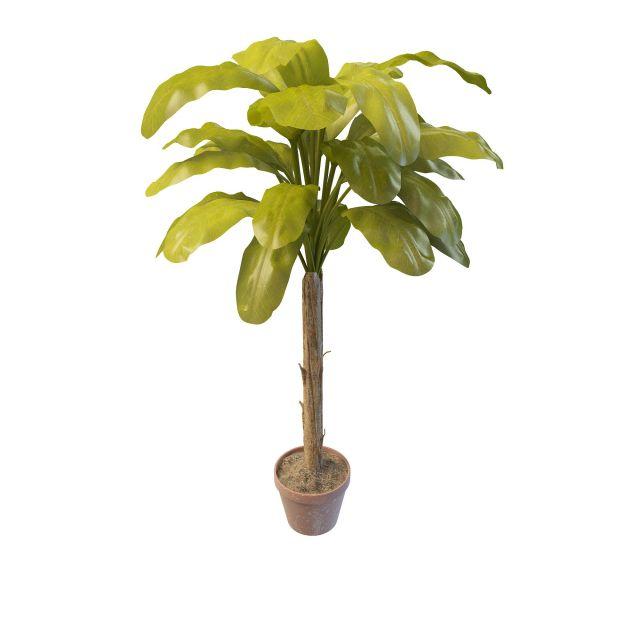 Indoor banana tree 3d model 3ds max files free download - modeling ...