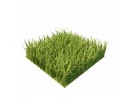 Grass squares 3d model