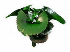 Elephant ear plant 3d model