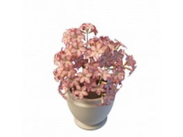 Potted pink flowers 3d model