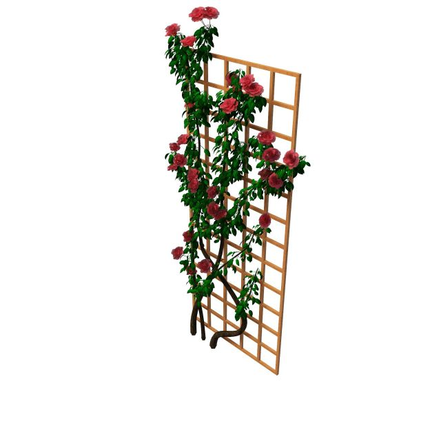 Trellis Flowering Plants 3d Model 3ds Max Files Free