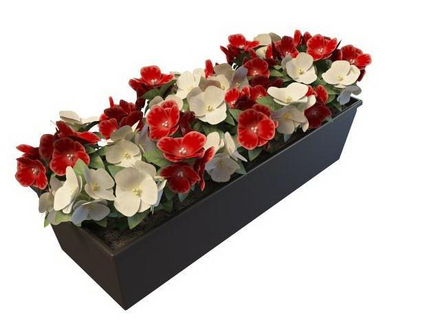 DOWNLOAD 880 FLOWERS & PLANTS