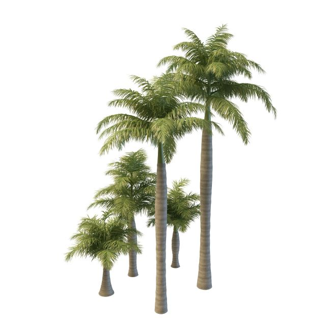 Royal palm trees 3d model 3ds max files free download - modeling