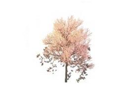 Spring pink tree 3d model