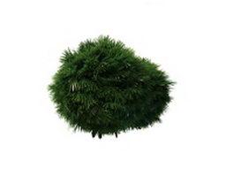 Topiary ball shrub 3d model