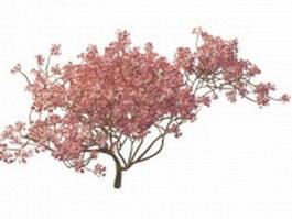 Blooming peach tree 3d model