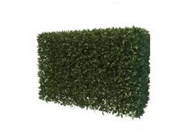 Hedge plants 3d model