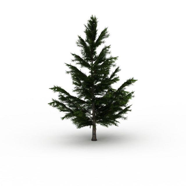 Spruce Tree 3d Model 3ds Max Files Free Download