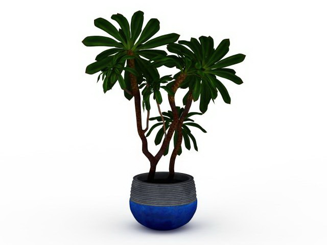 Indoor tree plants 3d model 3ds max files free download - modeling ...