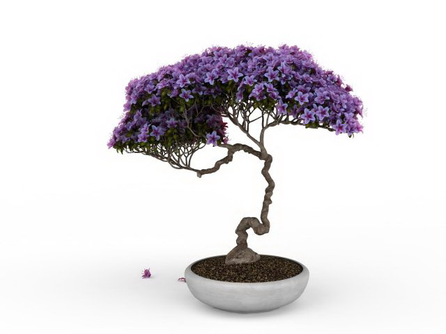 Wisteria Bonsai Tree 3d Model 3ds Max Files Free Download