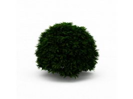 Topiary trimmed bush 3d model