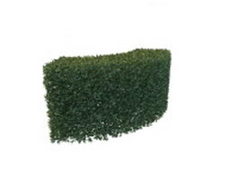 Hedge trimmed bush 3d model