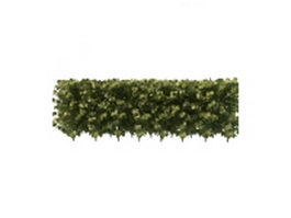 Privacy hedge 3d model