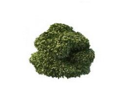Unique topiary design 3d model