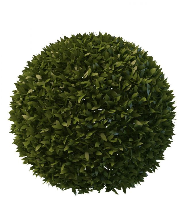 Topiary Ball 3d Model 3ds Max Files Free Download