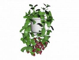 Indoor potted vine plant 3d model